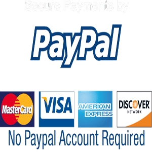 paypal action