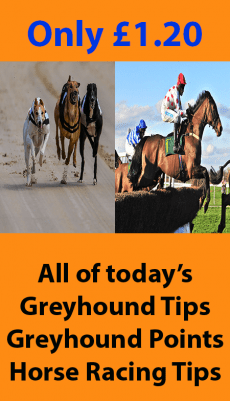 Product Image 230x401 - Horse and Greyhound Tips Updated Daily