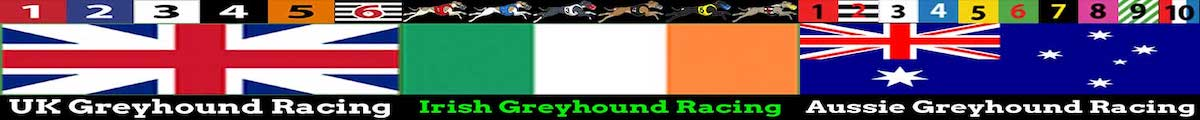 Greyhound racing tips today