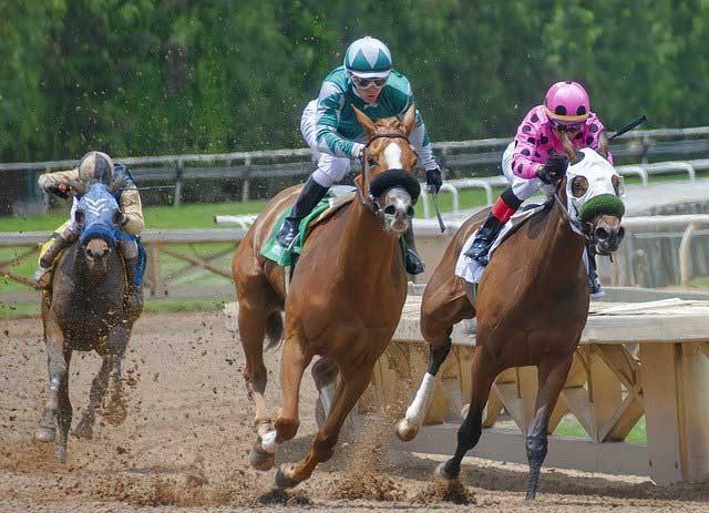 horse racing best tips